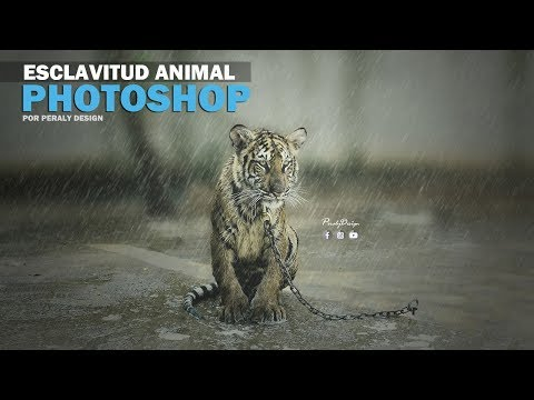 ESCLAVITUD ANIMAL | Fotomanipulación + Creación de Lluvia con Photoshop [Tutorial de Photoshop] thumbnail