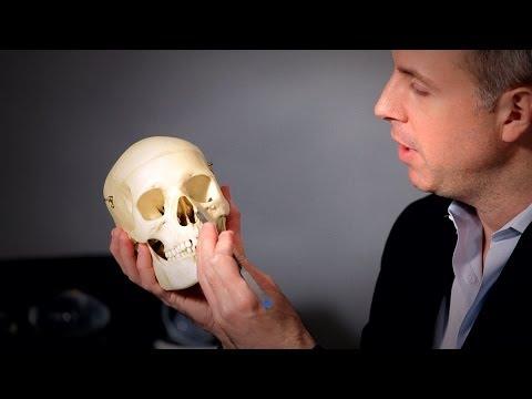 Are Nasal Bones Broken for a Nose Job? | Plastic Surgery