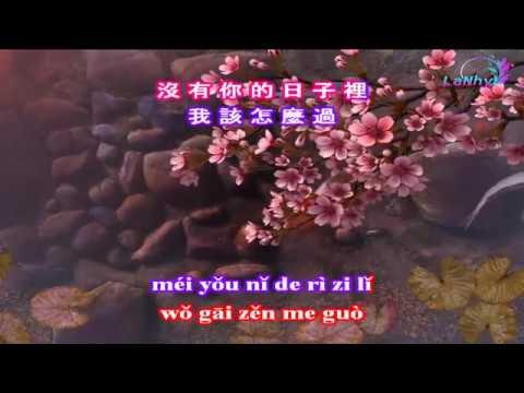 Tư Niệm Là Một Khúc Ca - KARAOKE - 思念是一首歌 - Beat