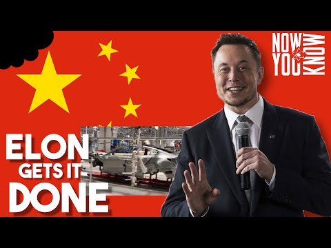 elon-gets-it-done-in-china-|-ttn-bite-sized