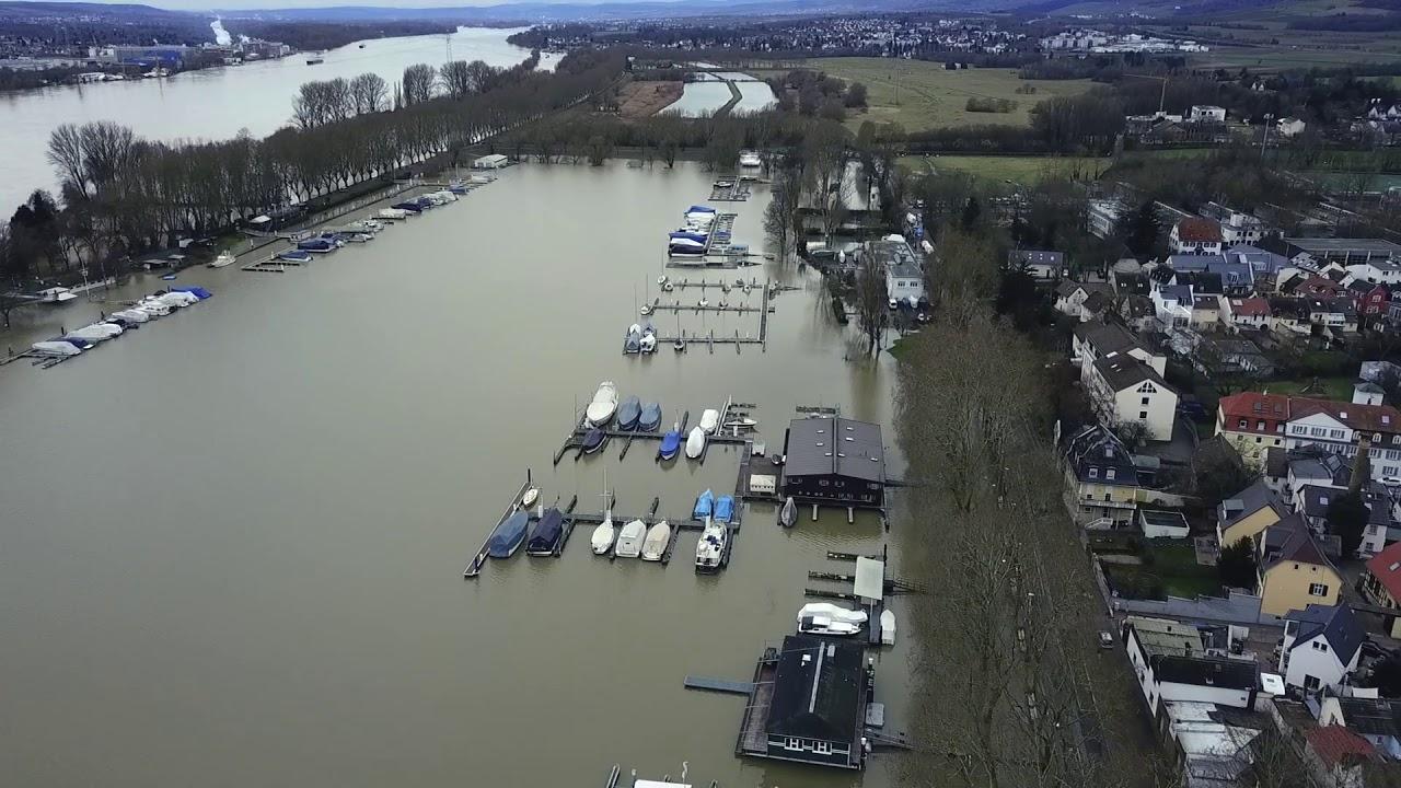 Hochwasser in Wiesbaden – Luftaufnahmen vom Schiersteiner Hafen und Biebricher Rheinufer