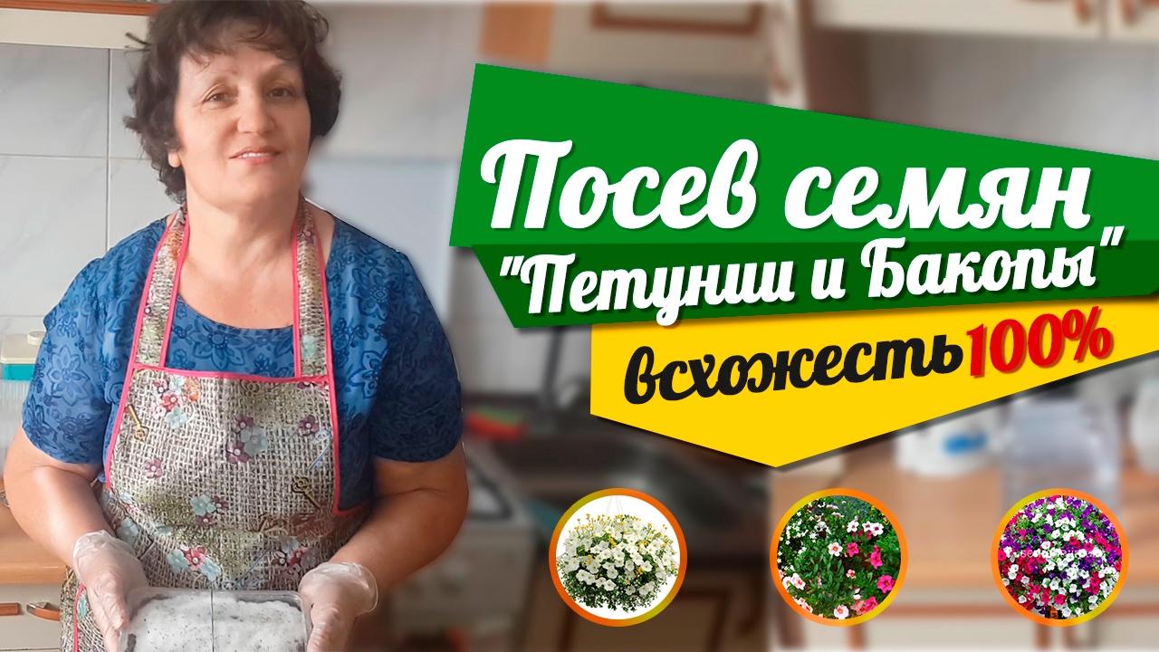 Вы можете заказать семена цветов, овощей или газонную траву и мы доставим семена почтой или компанией сдек в любой регион россии. В центре москвы расположен магазин семена «биотехника μ». Так же вы можете купить семена в крупных торговых центрах. По москве, санкт питербургу и.