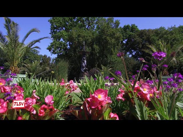 Luçon. De belles couleurs estivales au jardin Dumaine
