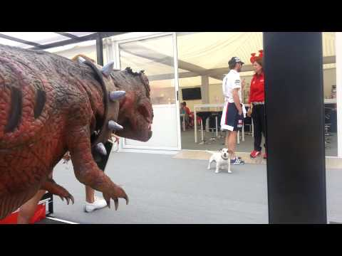 Dog vs dinosaur