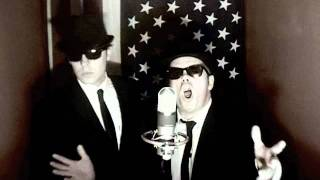 6345-789 Jailhouse Blues Brothers Stuck in a box , Release us!!