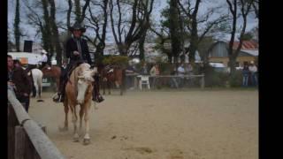 concours d'équitation western au ranch