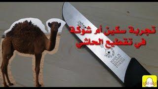 تجربة سكين أم شوكة عند الجزار f.herder knives