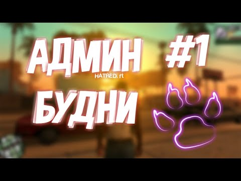 АДМИН БУДНИ #1. САМЫЙ КРУПНЫЙ RPG СЕРВЕР SAMP! GALAXY-RPG