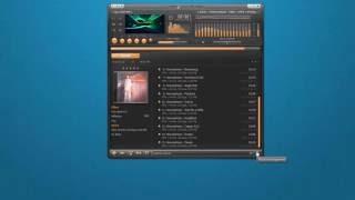 AIMP Player Review| Free Audio Player screenshot 4
