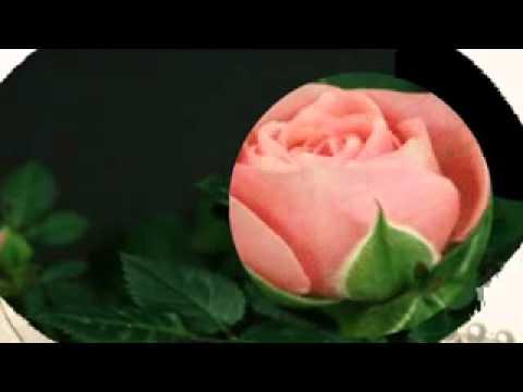Romantic Italian Love Songs _Amore mio_WMV V9.wmv