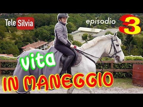 VITA IN MANEGGIO Episodio 3 - REALITY HORSE SHOW