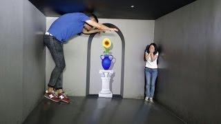 видео Музеи