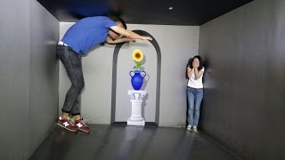 видео Музей