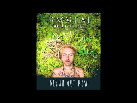 Trevor Hall - Walk Quietly (With Lyrics)