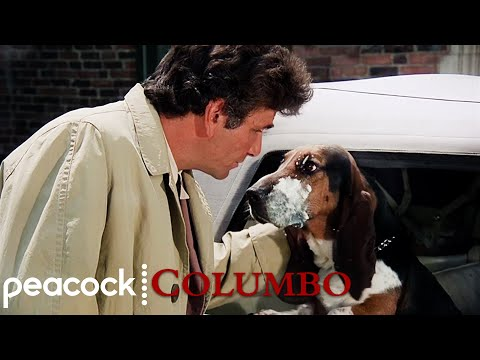 The Best Of Columbo's Dog | Columbo