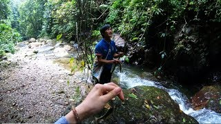 Fishing in the stream between the jungle
