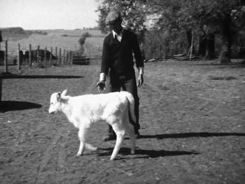 Nebraska Farm 1930's
