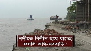 নদীতে বিলীন হয়ে যাচ্ছে ফসলি জমি-ঘরবাড়ি! | Flood In Bangladesh