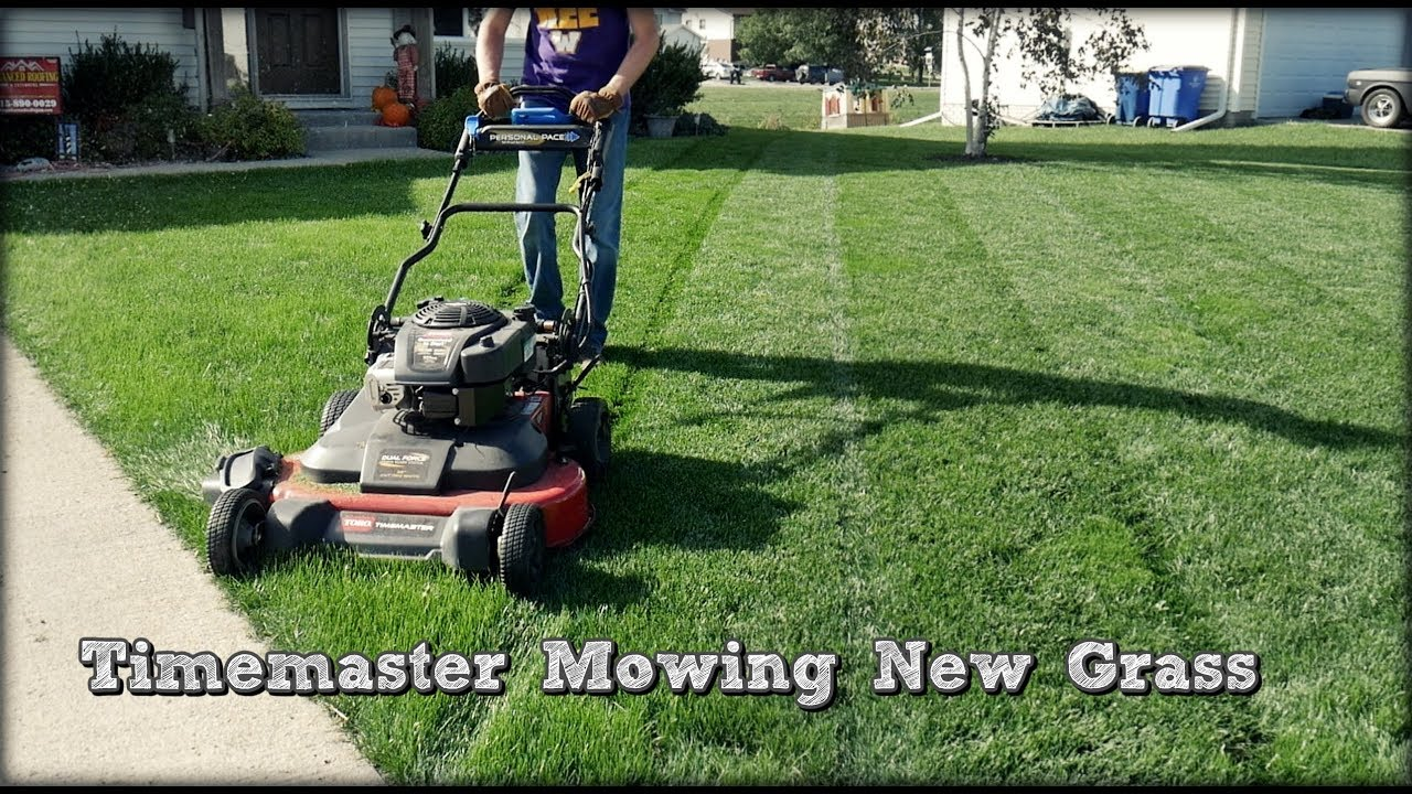 Lawn Update 44 First Toro Timemaster Mow On New Grass