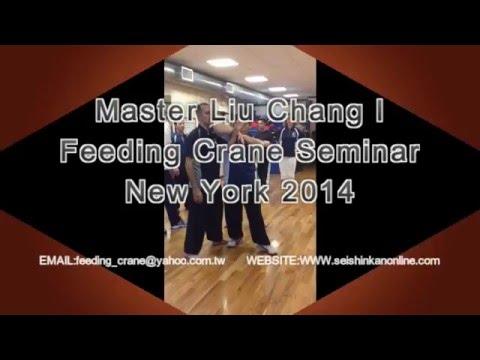 Master Liu Chang I Feeding Crane NY Seminar 2014