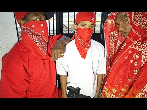 Radio Host: Obama Will Arm Bloods & Crips - YouTube Gangs Bloods