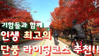기함들과 함께 내장산 단풍 라이딩 ㅣ 광주 근교 자전거…