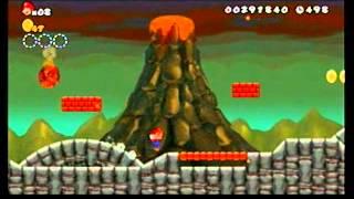 New Super Mario Bros Wii: Any% 25:28