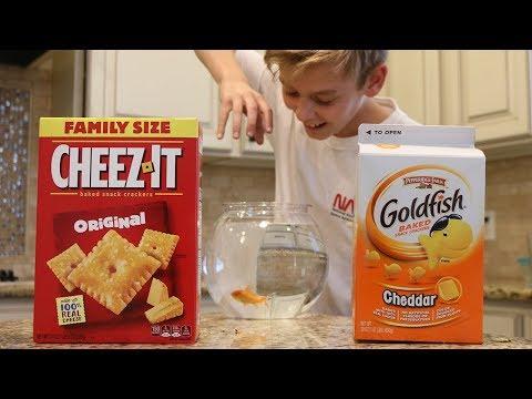 Cheez-it Vs Goldfish