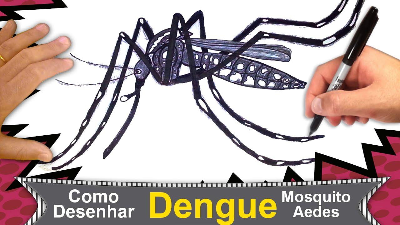 Como Desenhar O Mosquito Da Dengue Aedes Aegypti 107 Youtube