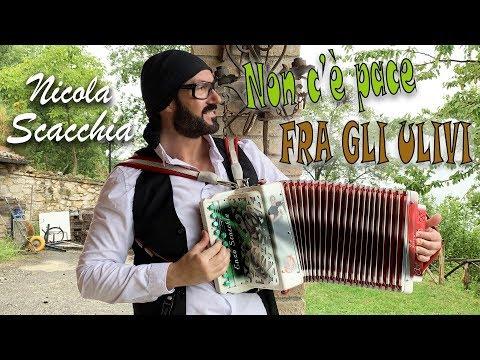 Non c'è pace fra gli ulivi (valzer di Casadei rielaborato da NICOLA SCACCHIA) organetto fisarmonica