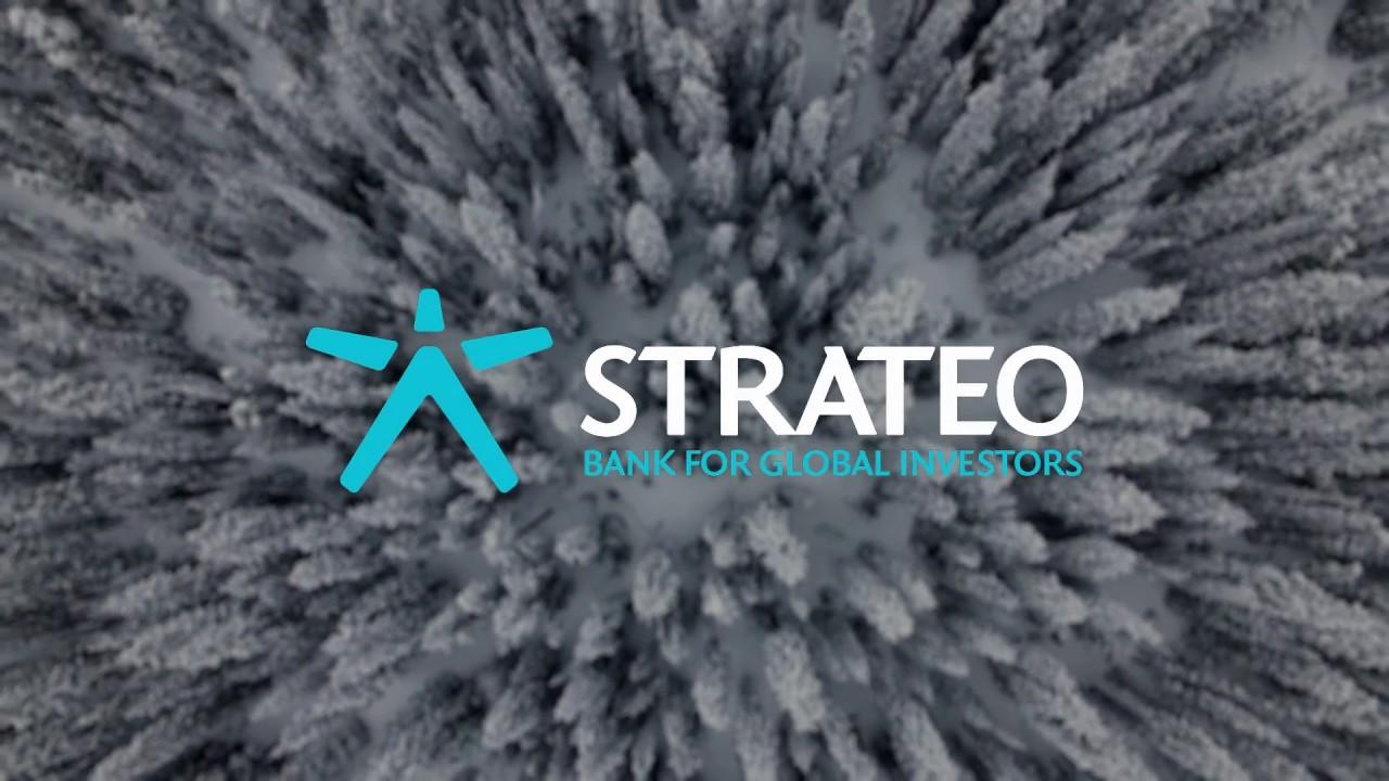 strateo online trading erfahrungen fx trading strategien