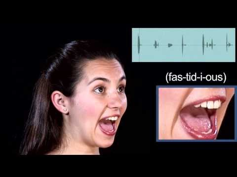 Captivating High Definition Video English Pronunciation   FASTIDIOUS