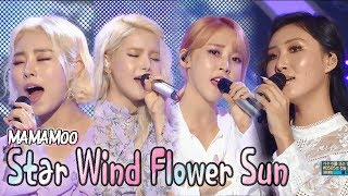 Star Wind Flower Sun