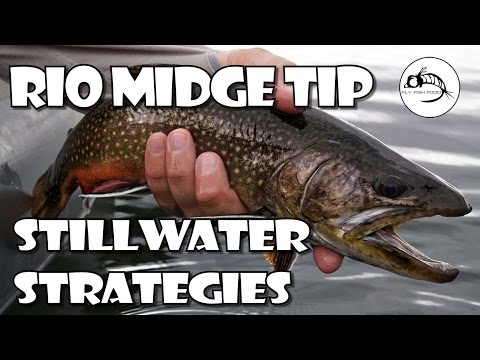 RIO Midge Tip: Strategies For Stillwater By Fly Fish Food