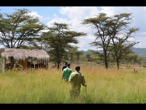 Nouvelles kenyanes: Désertification