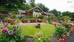 Home & Garden - Amazing Landscaping Design Ideas