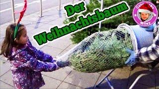 Wir kaufen Weihnachtsbaum und Schmuck ein - follow me around shopping