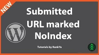 Submitted URL Marked NOINDEX - WordPress Category Index Coverage Issue Fix