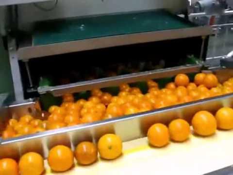 Industrial Freshly Squeezed Orange Juice Machine