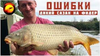 Ошибки ловли сазана и карася / Сазан на донку на кукурузу / Рыбалка на сазана в Астрахани осенью