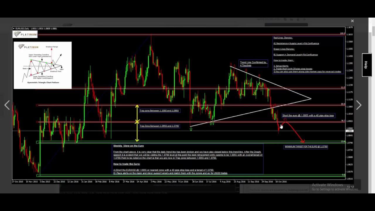 Platinum trading systems vadodara