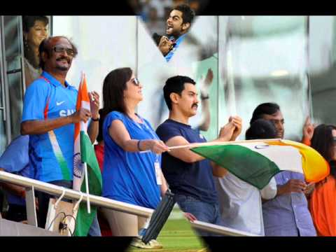 2011 cricket world cup india celebrations