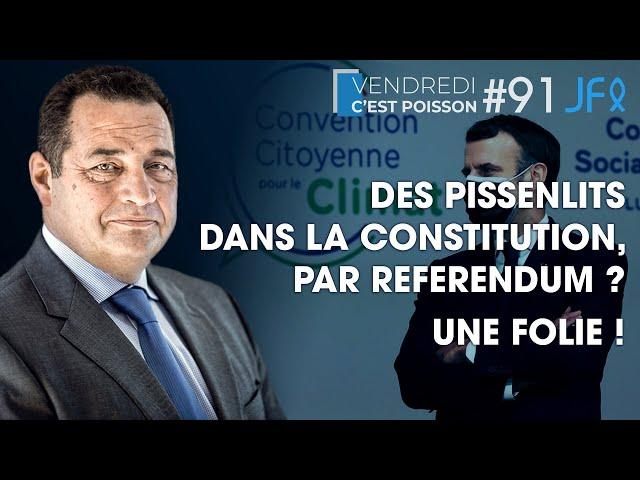 Des pissenlits dans la Constitution, par référendum ? Une folie ! | VCP 91