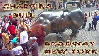 Charging Bull (Wall Street Bull) - New York, Manhattan 4K
