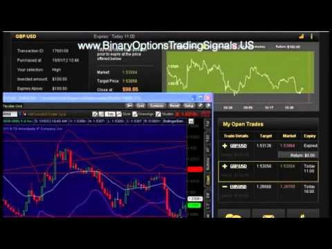 Copy binary option traders