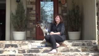 Canine Good Citizen Training