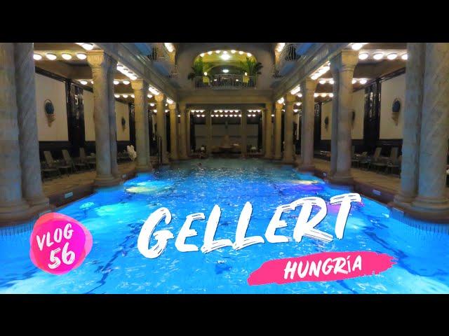 Balneario de aguas termales Gellért 💦 Budapest Hungria 🇭🇺