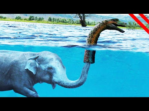 criaturas-míticas-que-realmente-pueden-existir