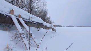 ЖОР НА ЖЕРЛИЦЫ В ФЕВРАЛЕ Один на реке Рыбалка 2020
