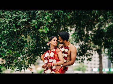 Hindu Wedding - Sydney, Australia - Priya & Rahul [Highlights]